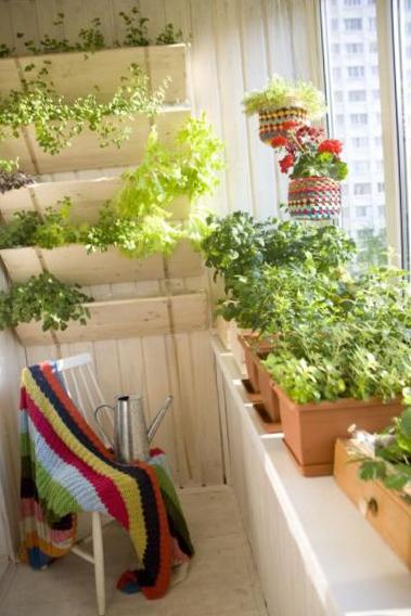 Дизайн сада на балконе с входом из кухни