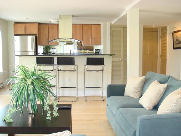 Дизайн кухни-гостиной - фото 17