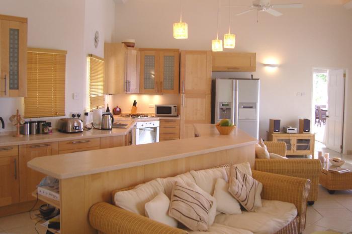 Дизайн кухни-гостиной - фото 1