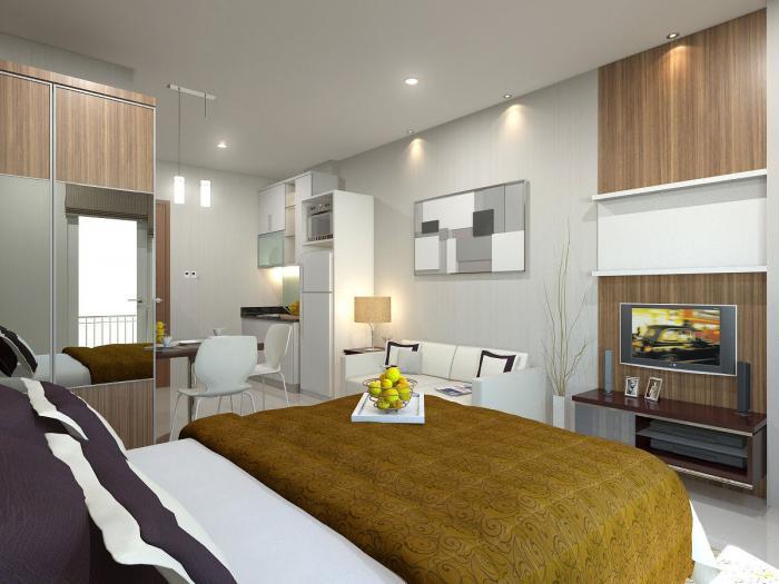 Дизайн квартиры-студии 2