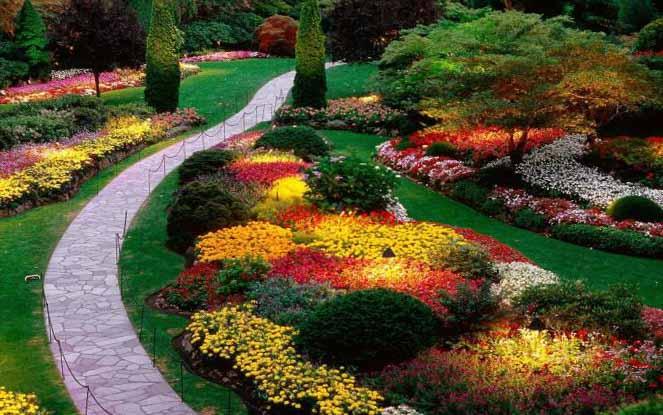 Ландшафт Садовых Участков