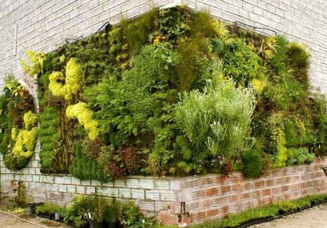 Ландшафтный дизайн дачного участка ТОП50 фото двора у