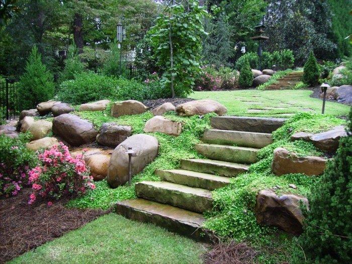 Фото ландшафтного дизайна дачного двора