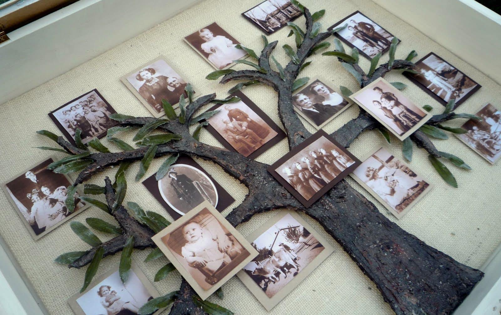 своими руками свою жизнь из фотографий цветов различных растений
