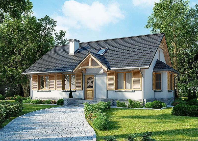 Надо ли покупать проект дома до строительства