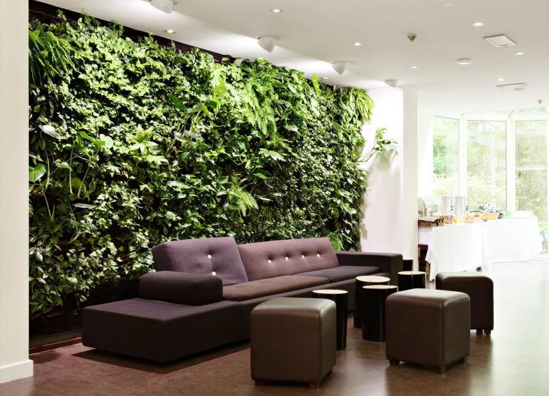 Комнатные растения в интерьере 5