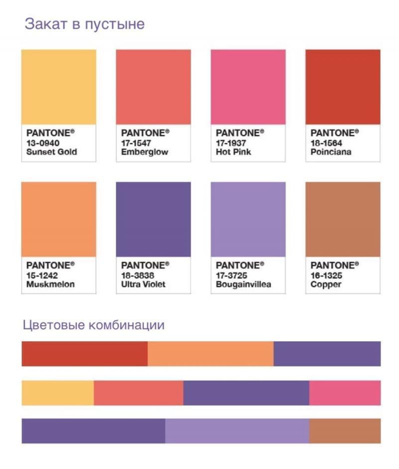 Фиолетовая гармоника 7