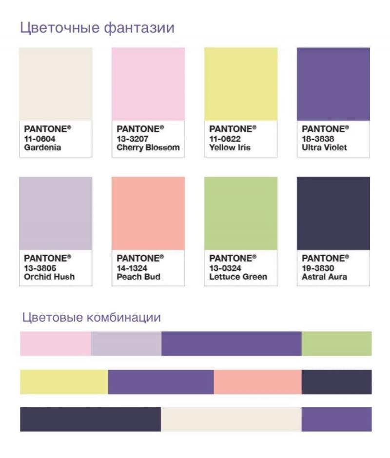 Фиолетовая гармоника 8
