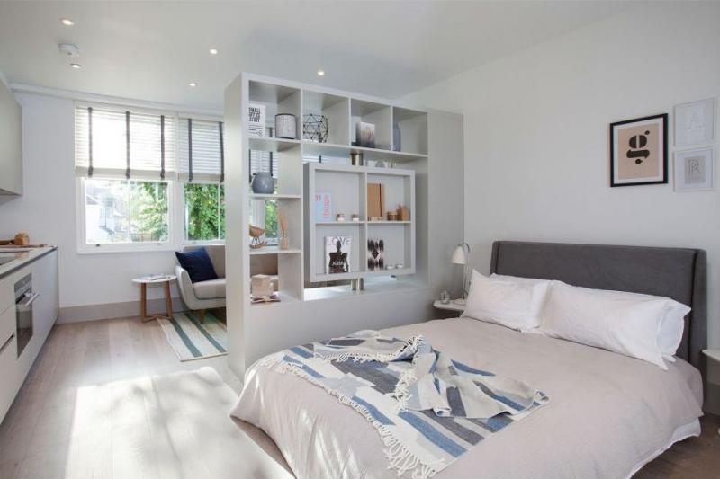 Гостиная со спальным местом со стеллажем