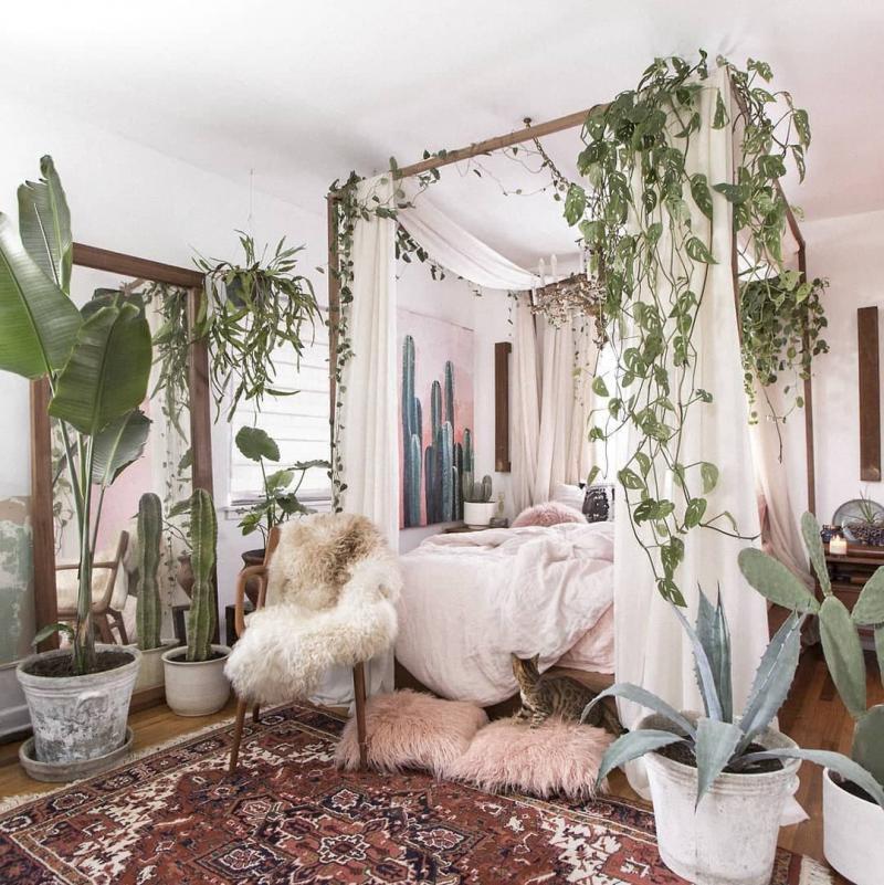 Растения в интерьере спальни 1
