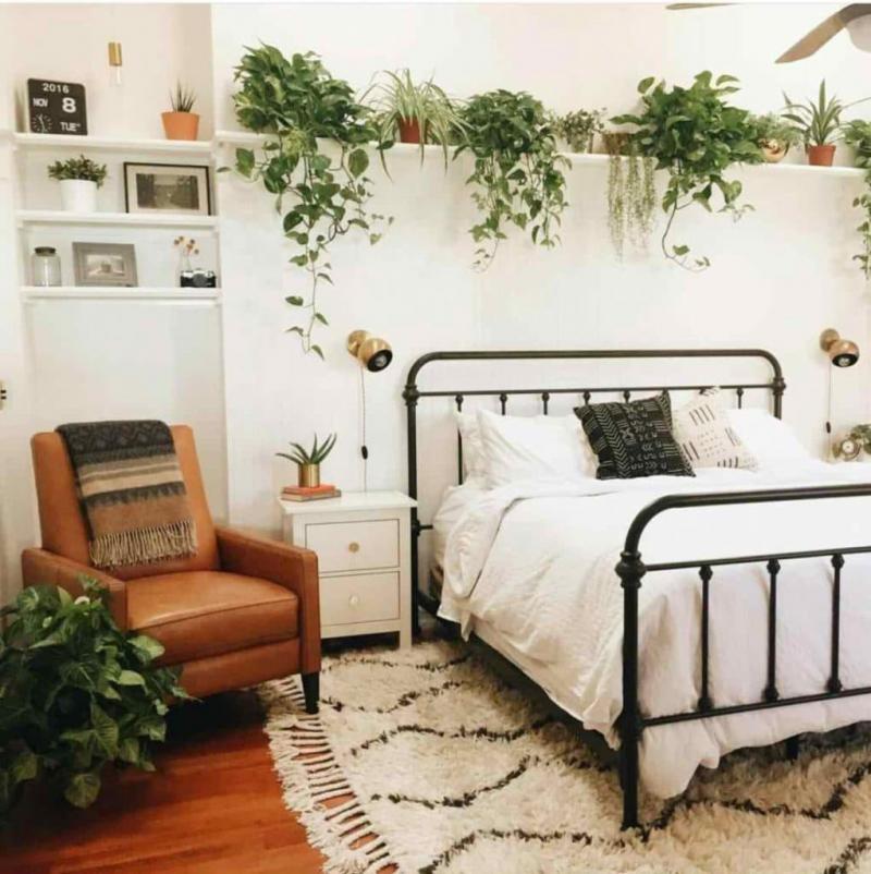 Растения в интерьере спальни 2