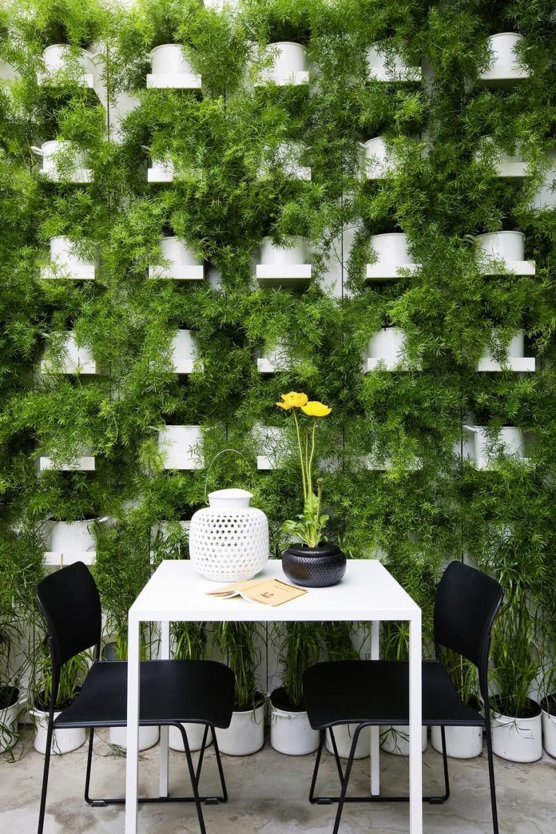 Вертикальные сады в интерьере 4