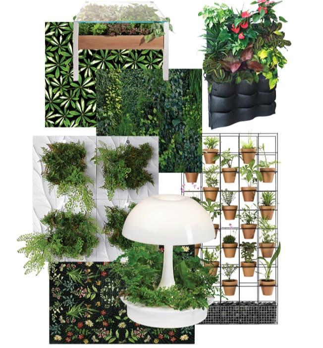 Вертикальные сады в интерьере (варианты усадки)