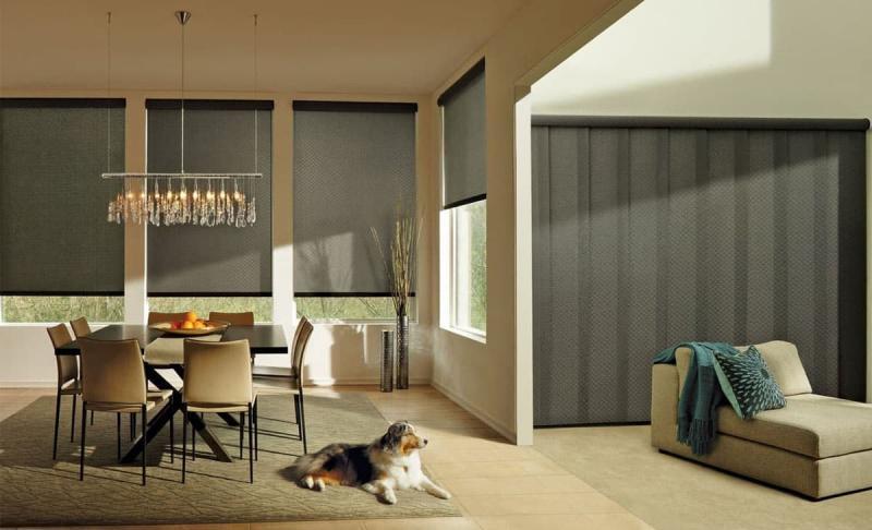 Рулонные шторы в интерьере гостиной 10