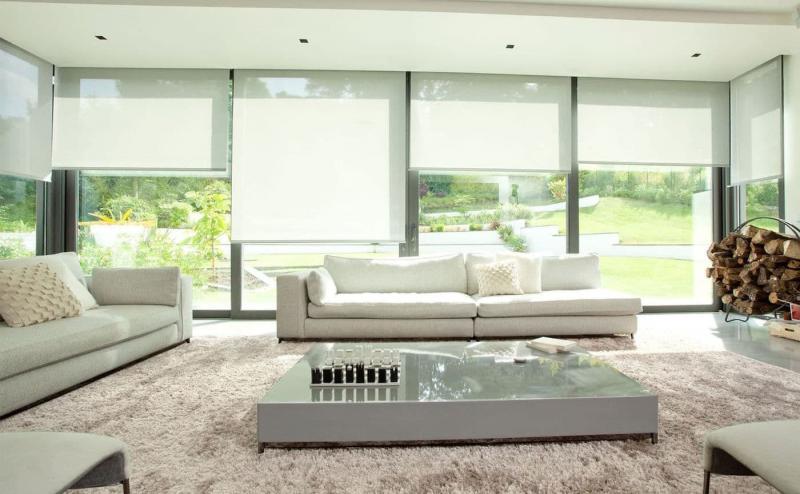 Рулонные шторы в интерьере гостиной 9