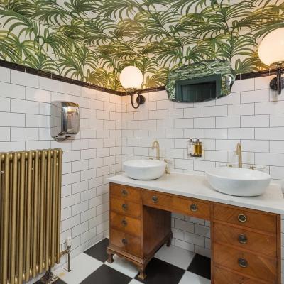 Чем облицевать потолок в ванной?